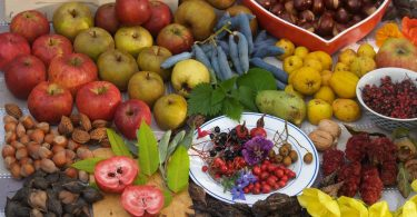 Revisión de libros de cocina: excelente comida de las ciudades verdes europeas