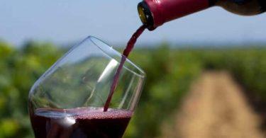 Viscosidad del vino, ¿tienes piernas?